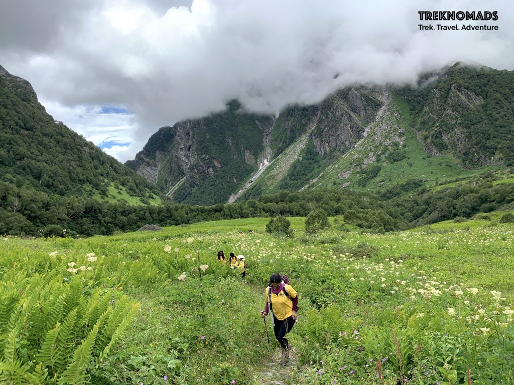 best time to do the valley of flowers trek